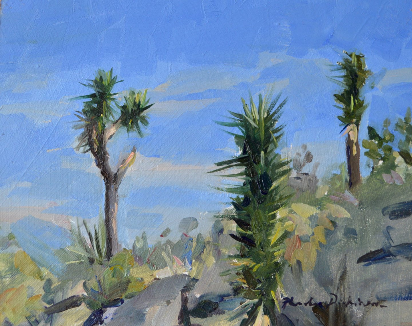 Joshua Trees in the midday sun