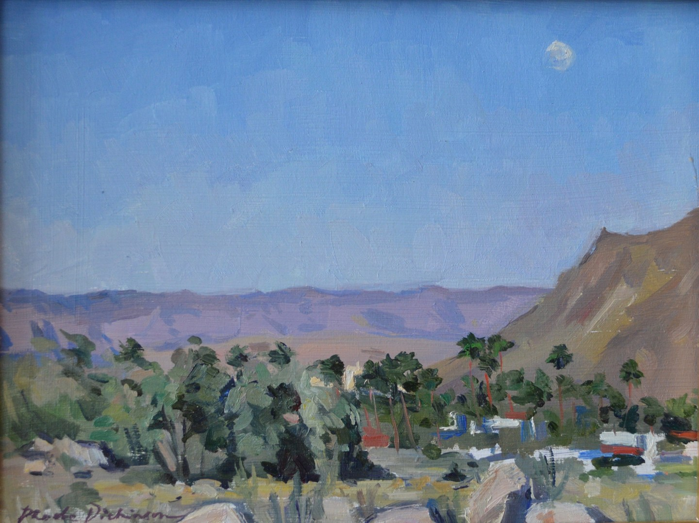 Moonrise over the desert